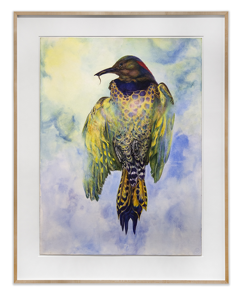 Noel Grunwaldt: For the Birds | Harper's Apartment