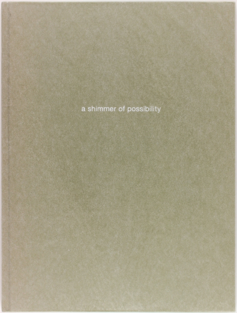 A Shimmer of Possibility (Signed Limited Edition). Paul Graham.