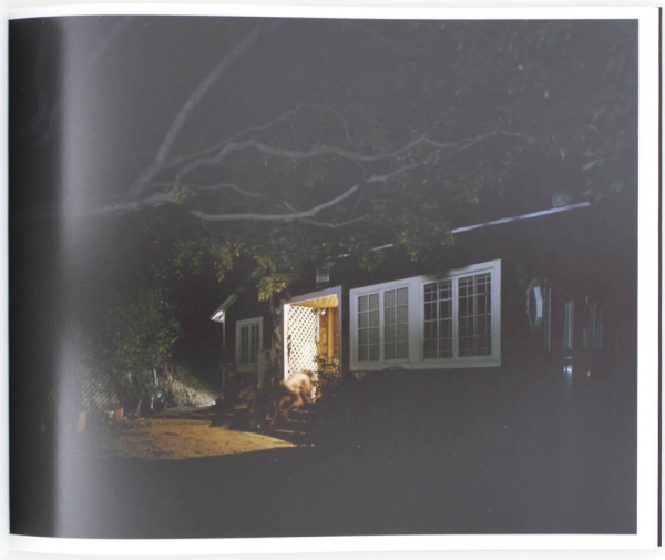Nocturnal (Signed Limited Edition).