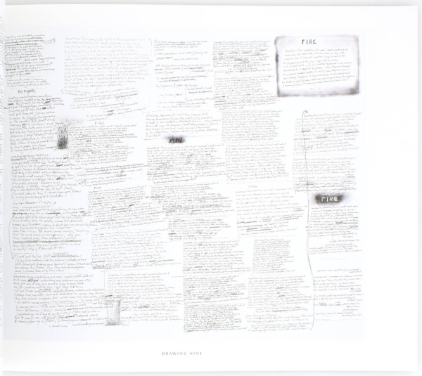 The Lives of the Poems: Twelve Drawings on Canvas by Mark Strand.