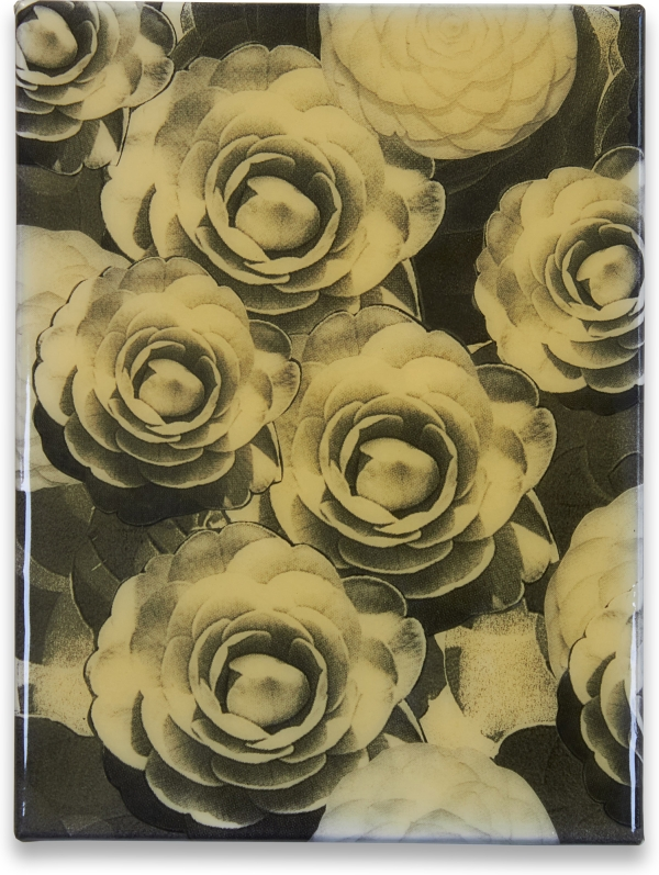 Untitled (Roses). Peter Dayton