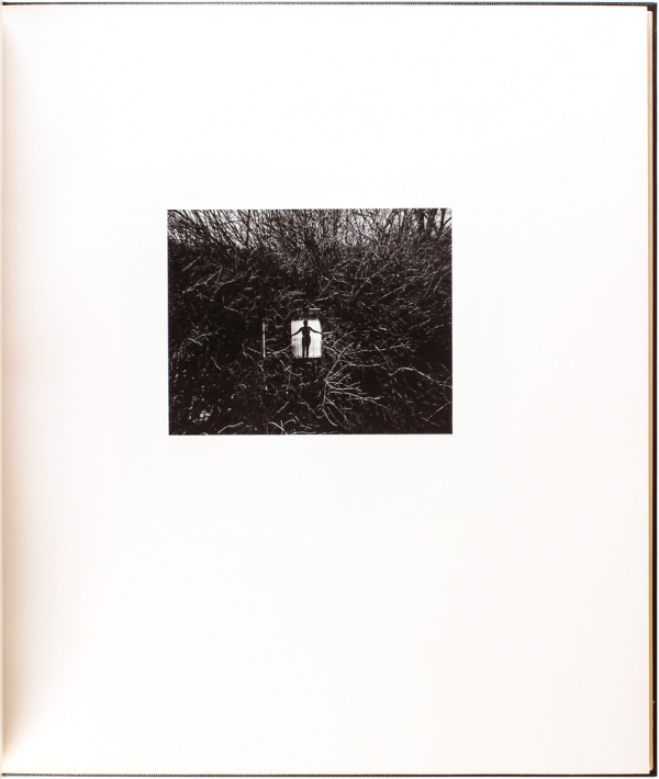 Photographs (Signed Limited Edition).