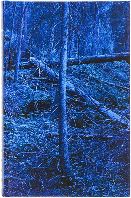 Blå Skog / Blue Forest (Signed Limited Edition). Morten Andersen