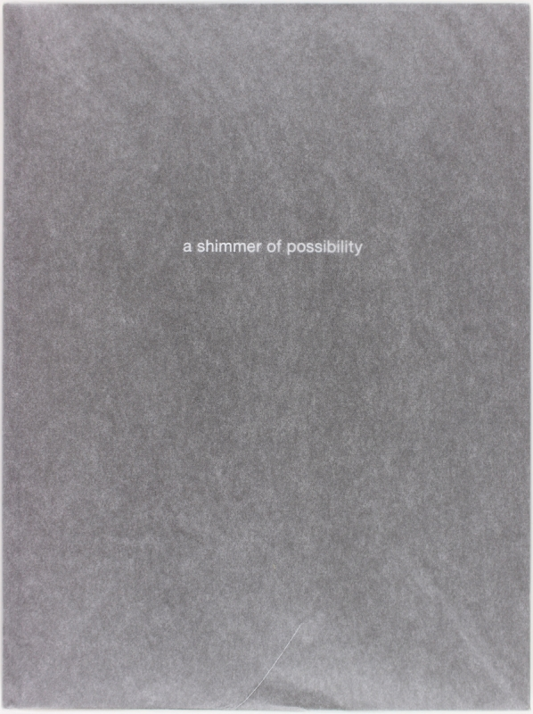 A Shimmer of Possibility (Signed Limited Edition).
